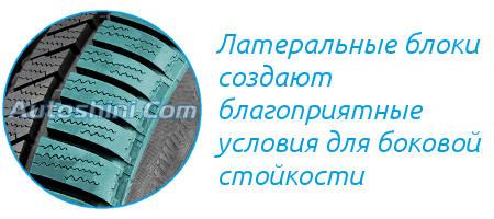 Боковые блоки Continental Conti Winter Contact TS 830P