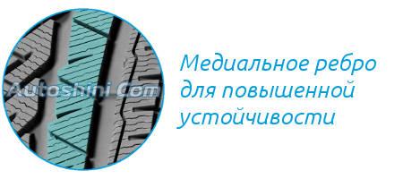 Ребро Michelin Pilot Alpin 4