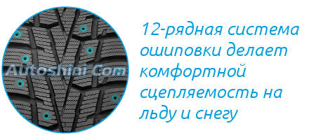 Шипы Nexen-Roadstone Winguard Winspike